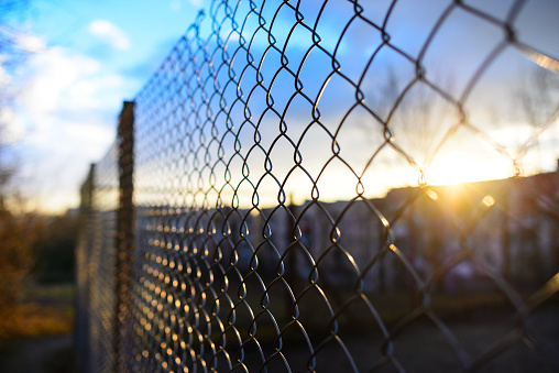 istock fence with metal grid in perspective 831117208