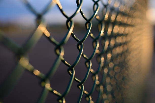 fence with metal grid in perspective fence with metal grid in perspective, background boundary stock pictures, royalty-free photos & images
