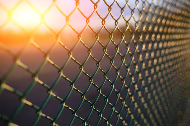 fence with metal grid in perspective stock photo