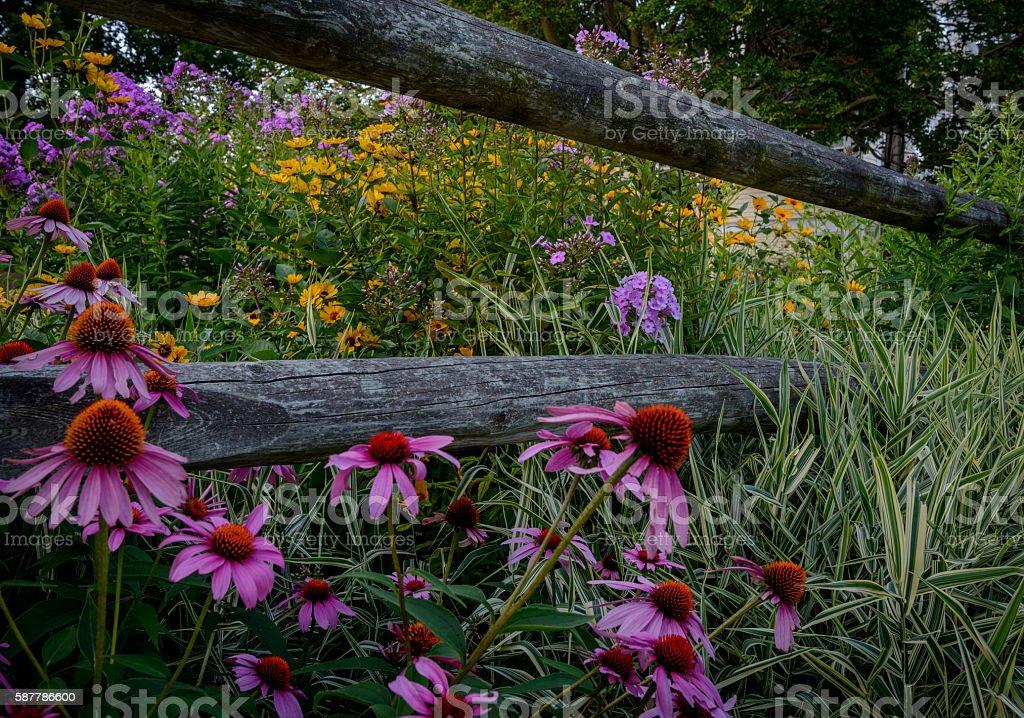 Fenced garden stock photo