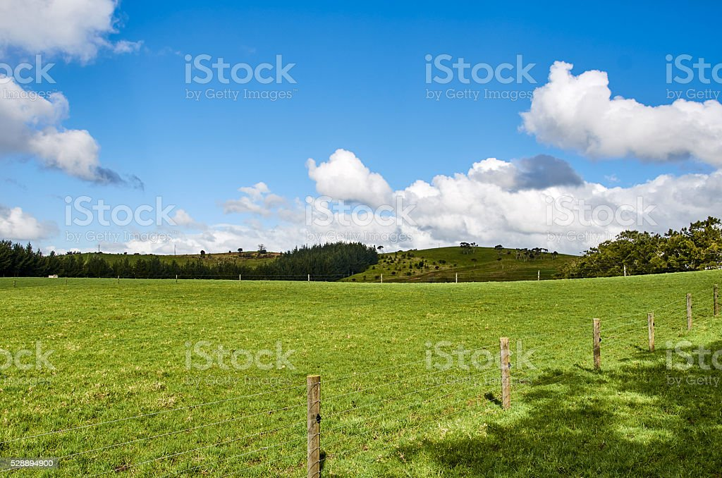 Fenced paddock  with green meadows and cloudy skies stock photo