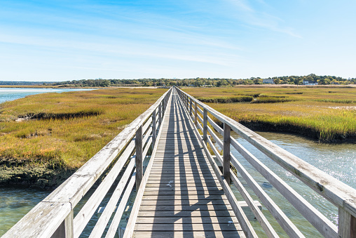 Straight narrow fenced wooden walkway through a grassy saltwater marsh on a sunny autumn day. Converging lines. Cape Cod, MA, USA.