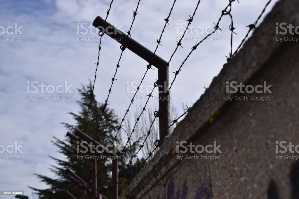 Fences with thorns. foto de stock royalty-free