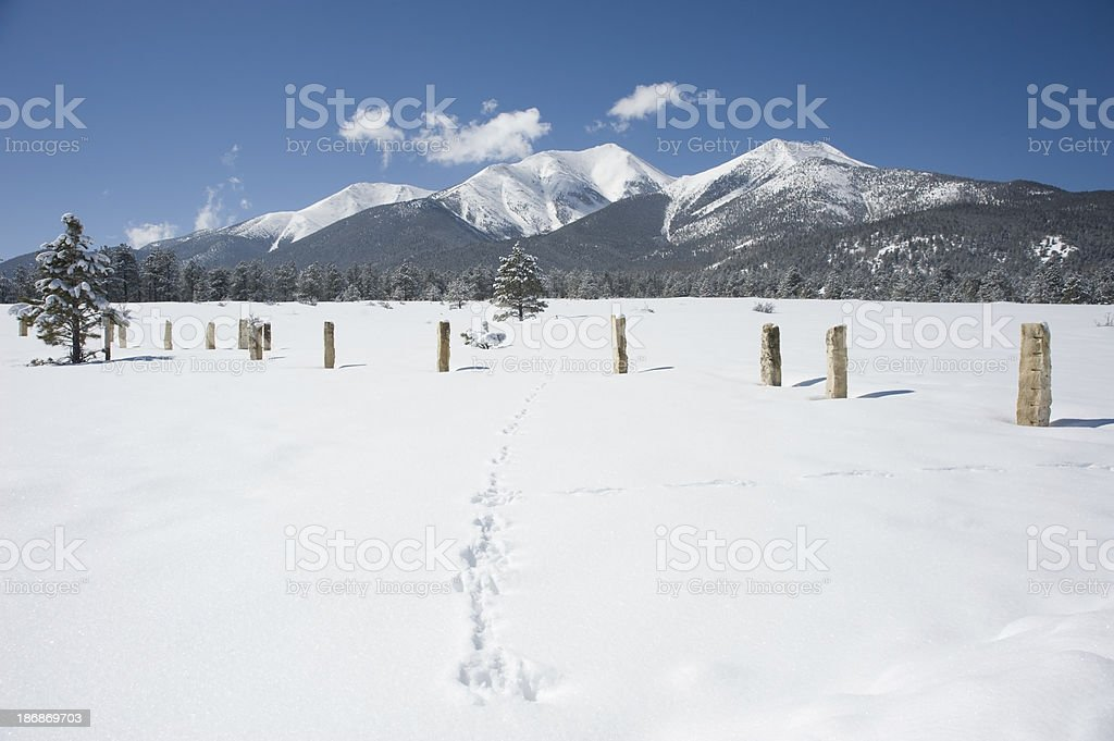 Fencing in Mount Princeton stock photo