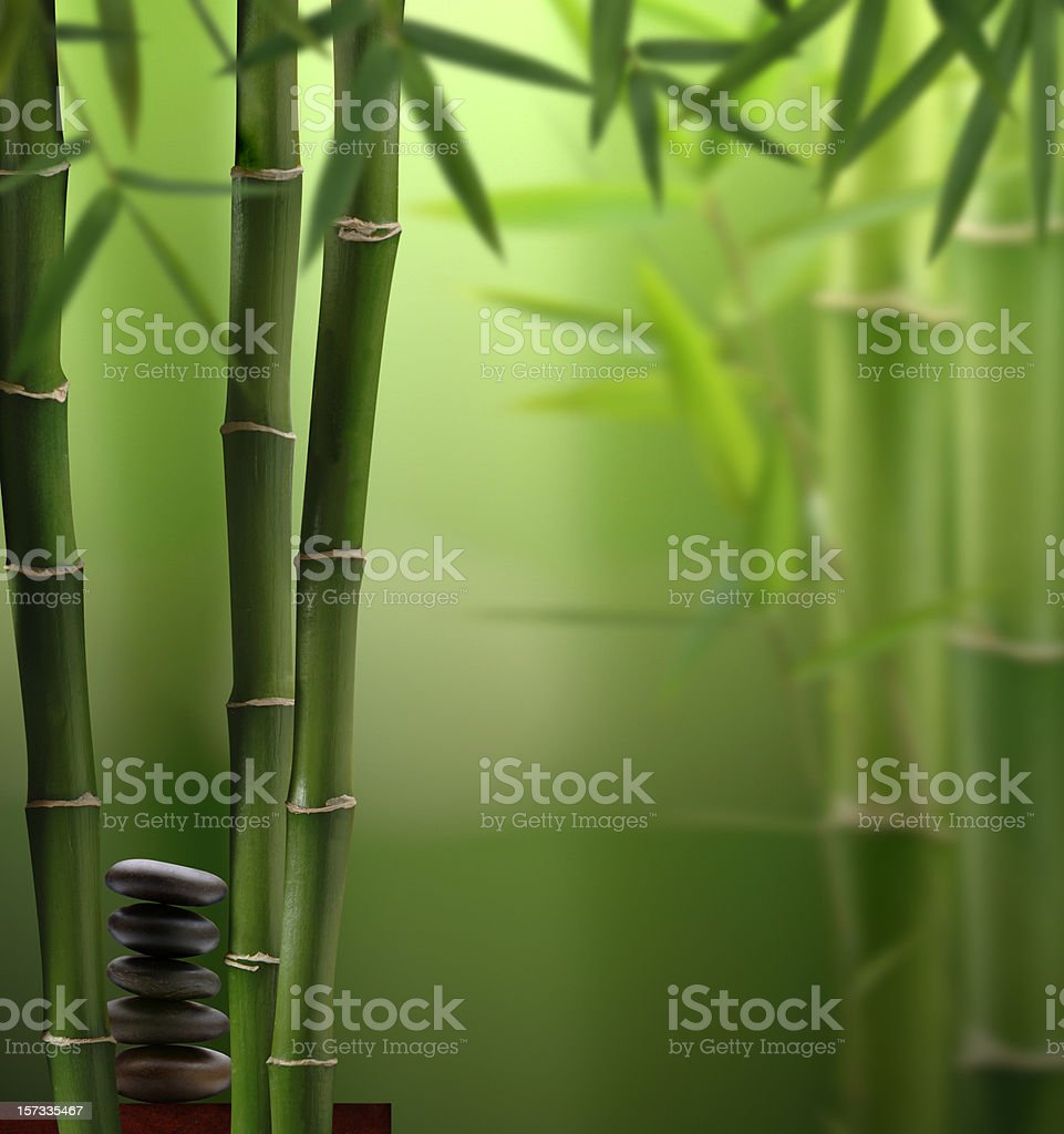 Feng-Shui Jungle royalty-free stock photo