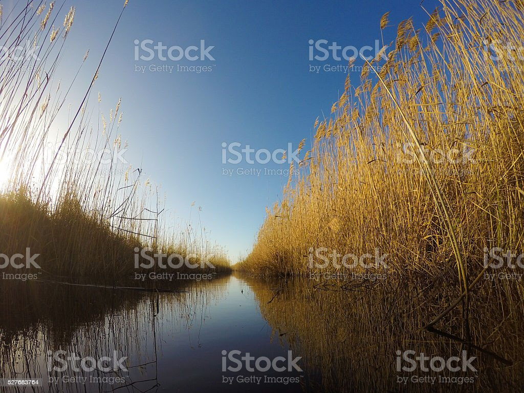 Fenland waterways - foto de acervo