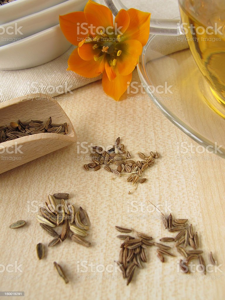 Fennel Anise Caraway Tea Stock Photo - Download Image Now