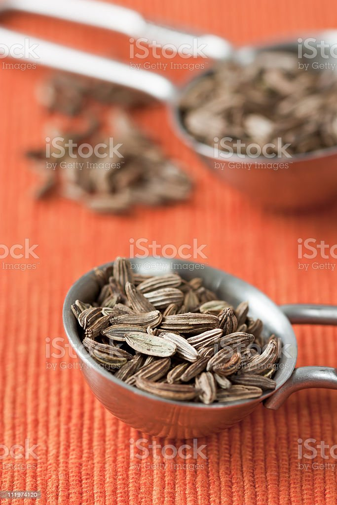 Fennel Seed stock photo