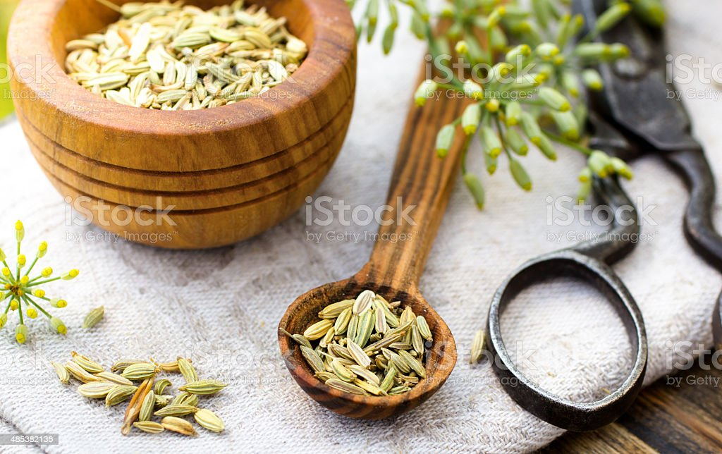 Fennel seeds in spoon stock photo