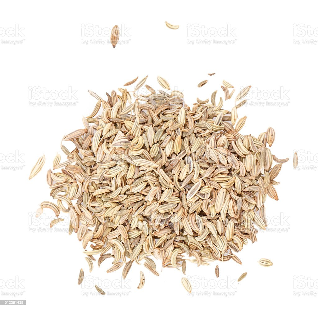 fennel seeds isolated stock photo