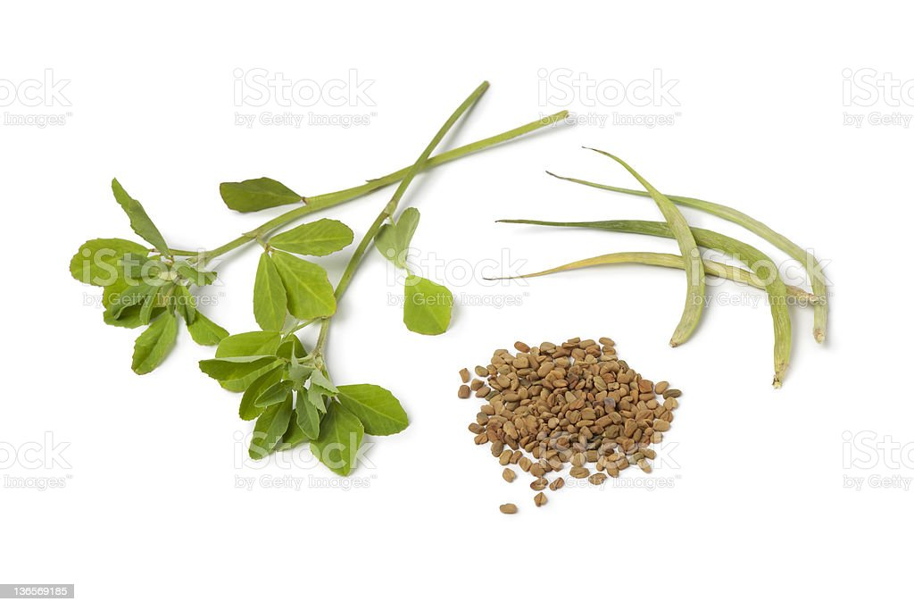 Fenugreek leaves,pods and seeds stock photo