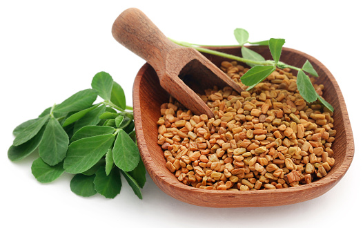istock Fenugreek seeds with green leaves 1150921460