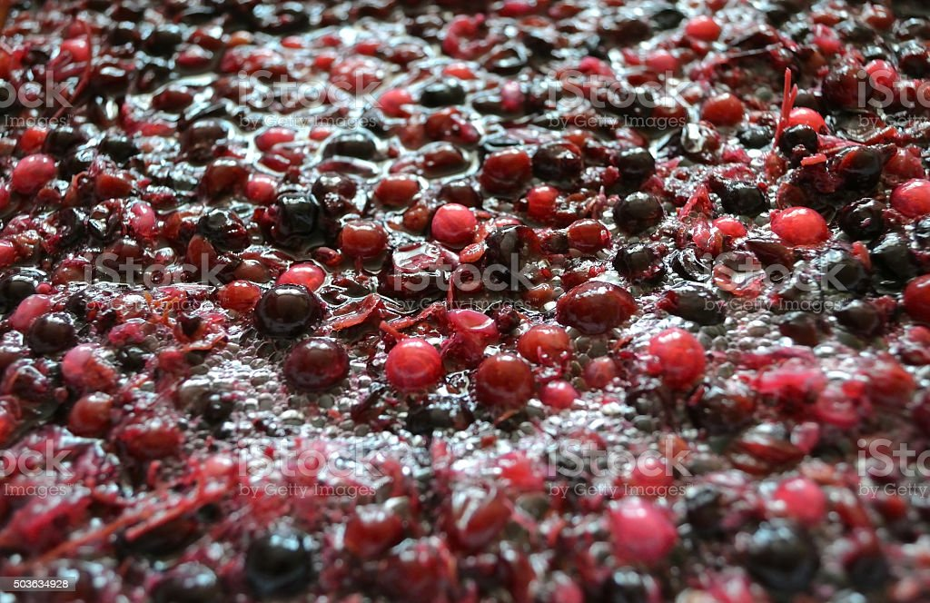 Fermentation of the pulp from berries for wine stock photo