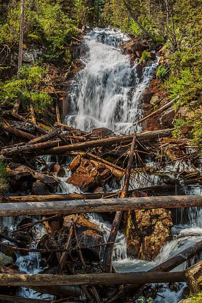 Fern Falls stock photo