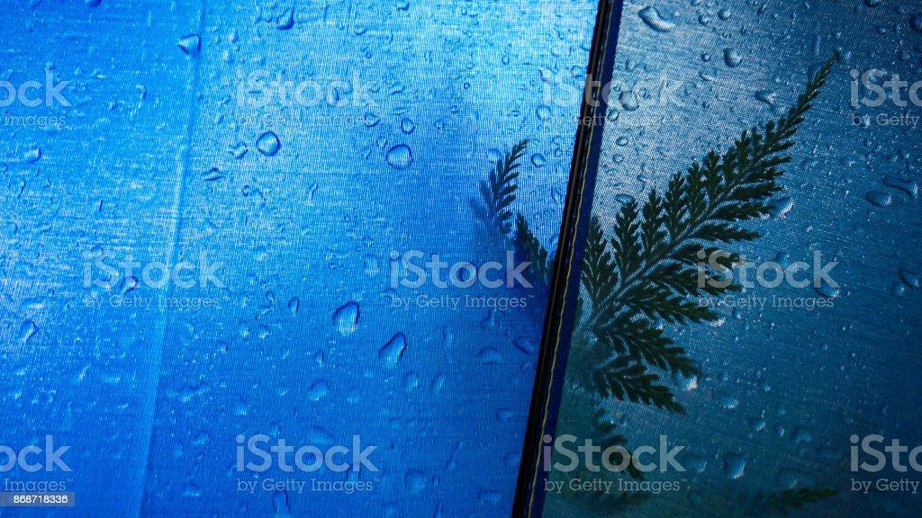 Fern leaf silhouette stock photo