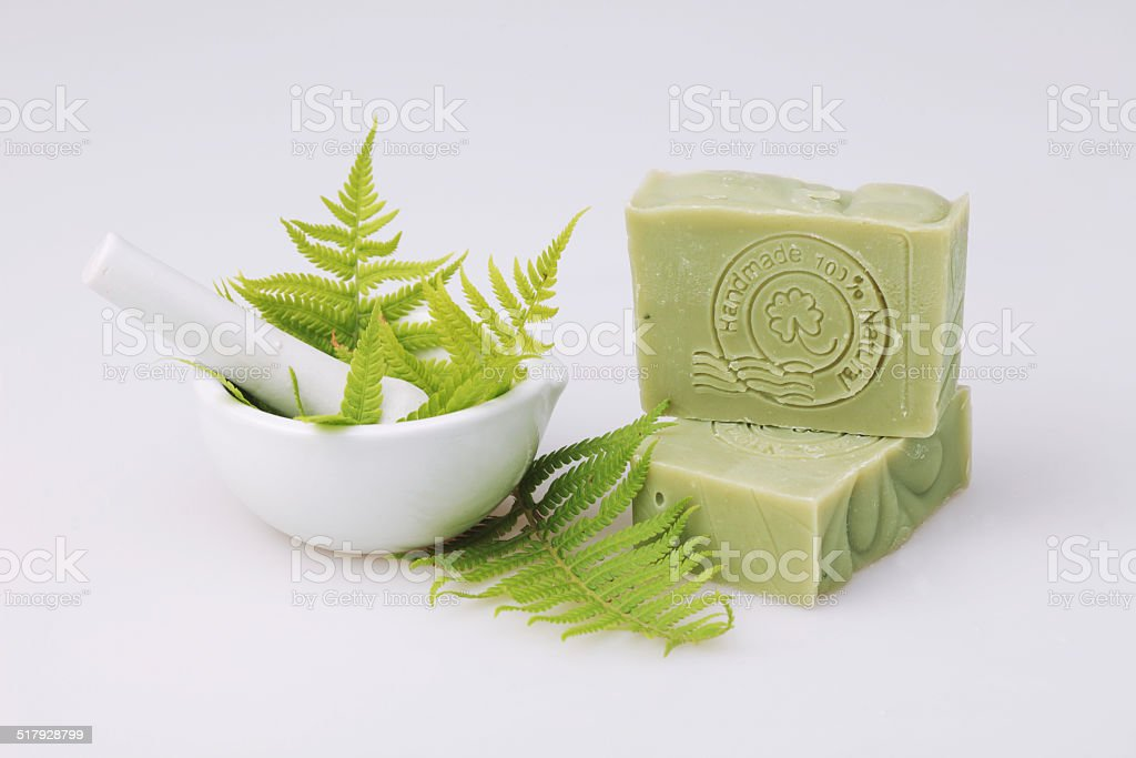 Fern soap stock photo