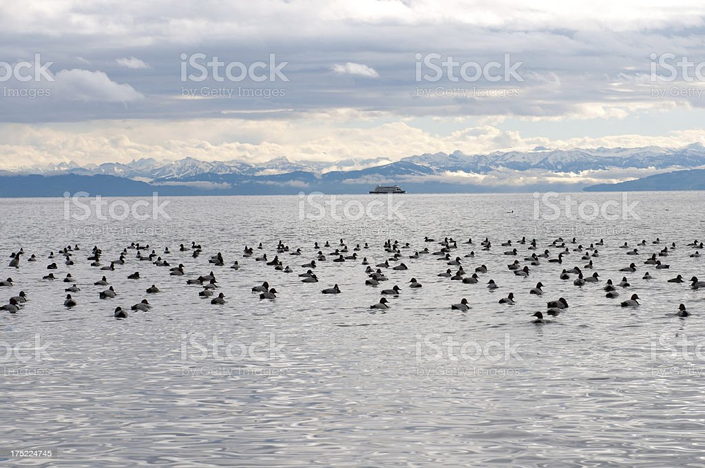 Ferry across Lake Constance royalty-free stock photo