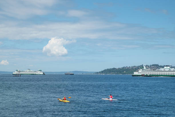Ferry boats and paddleboarders stock photo