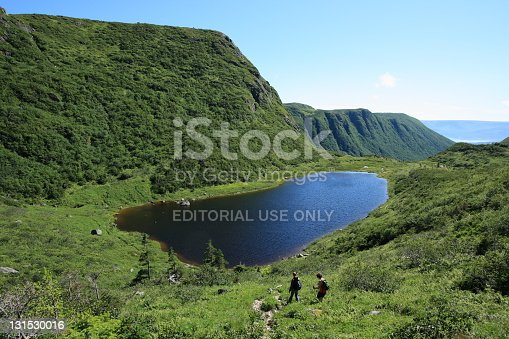 458694311 istock photo Ferry Gulch on Gros Morne Mountain 131530016