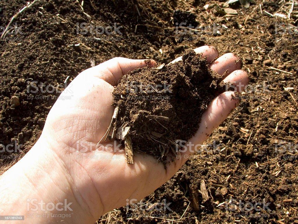 fertile garden; compost sample stock photo