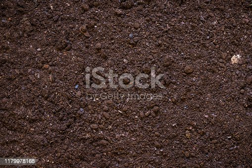 927125180 istock photo Fertile garden soil texture background 1179978168