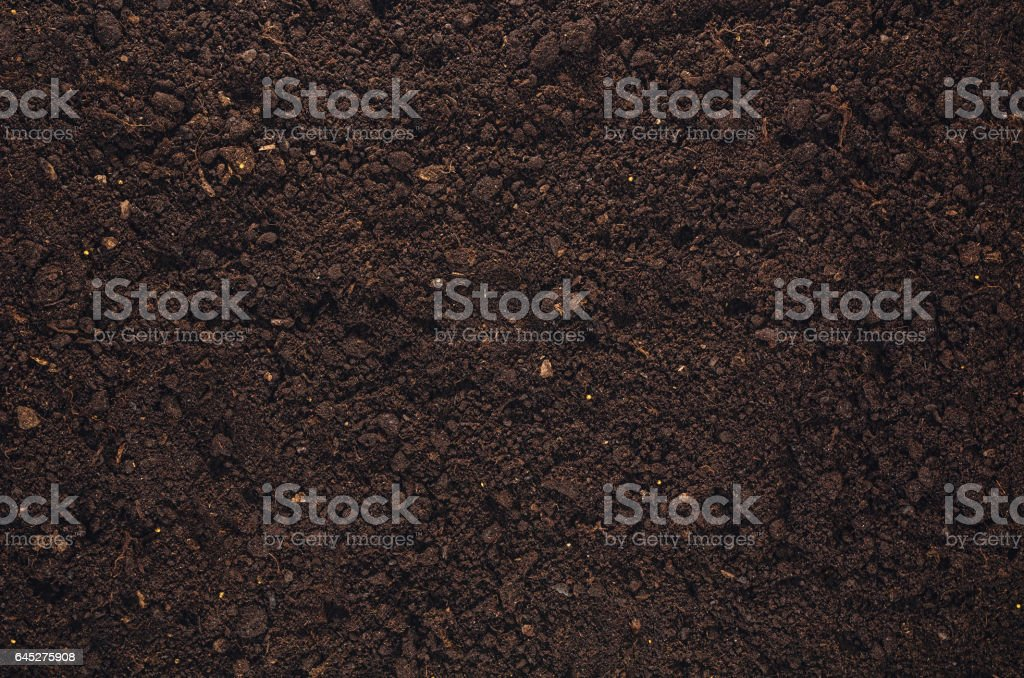 Fertile garden soil texture background top view – Foto