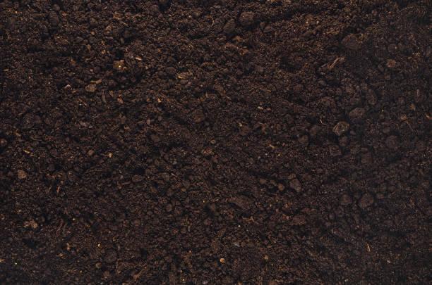 Fruchtbare Bodenstruktur im Garten, die oben im Blick – Foto
