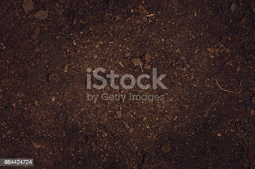 istock Fertile garden soil texture background top view 664424724
