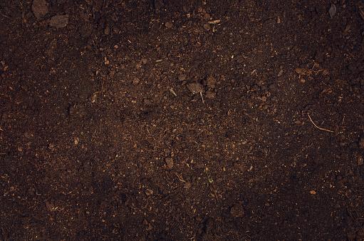 Fertile garden soil texture background top view