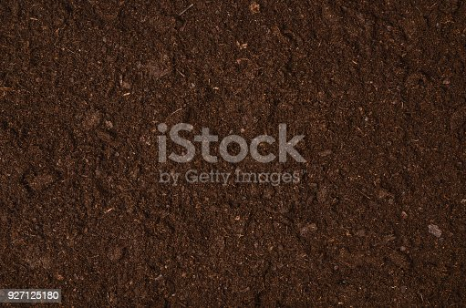 927125180 istock photo Fertile garden soil texture background top view 927125180