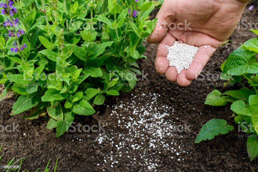 Fertilizer for the garden stock photo