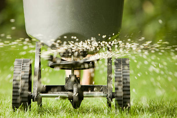 Fertilizer pellets spraying from spreader  lawn stock pictures, royalty-free photos & images
