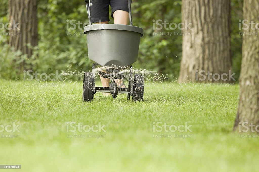 Fertilizer Spreader with Pellets Spraying on Grass stock photo