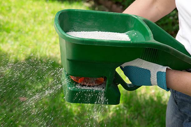 fertilizing 잔디 - 비료 뉴스 사진 이미지