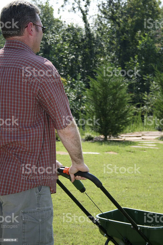 Fertilizing royalty-free stock photo