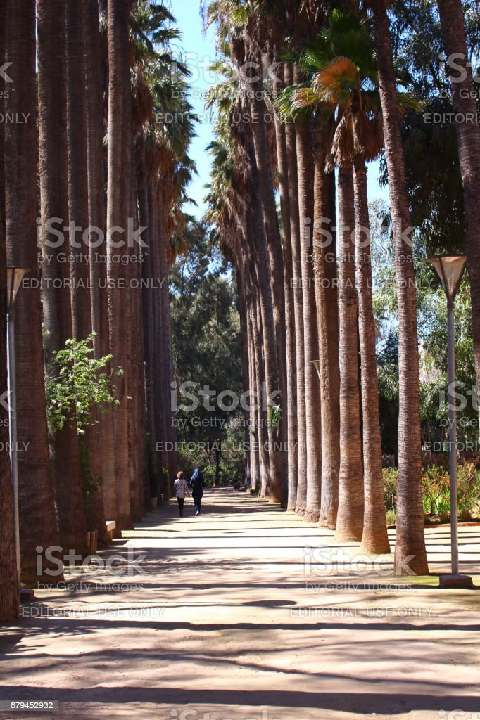 Fes, Morocco - MAR 07th 2017: A woman walking path stock photo