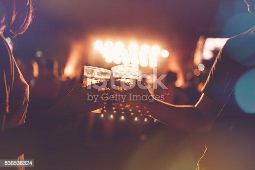 istock Festival concert crowd 836536324