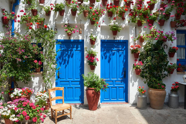 Festival de los Patios in Andalusia Blue patio doors with flower pots hanging on the white wall in Cordoba, Spain in sunny day. The time of Festival de los Patios. cordoba spain stock pictures, royalty-free photos & images