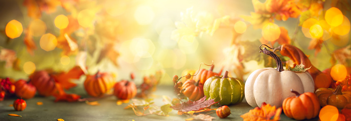 Festive autumn decor from pumpkins, berries and leaves. Concept of Thanksgiving day or Halloween with copy space
