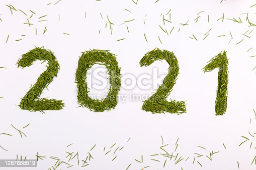 Heaps of green conifer needles laid in a shape of 2021 digit isolated on white. Symbolic new years background with copy space for text. Top view, flat lay, close up.