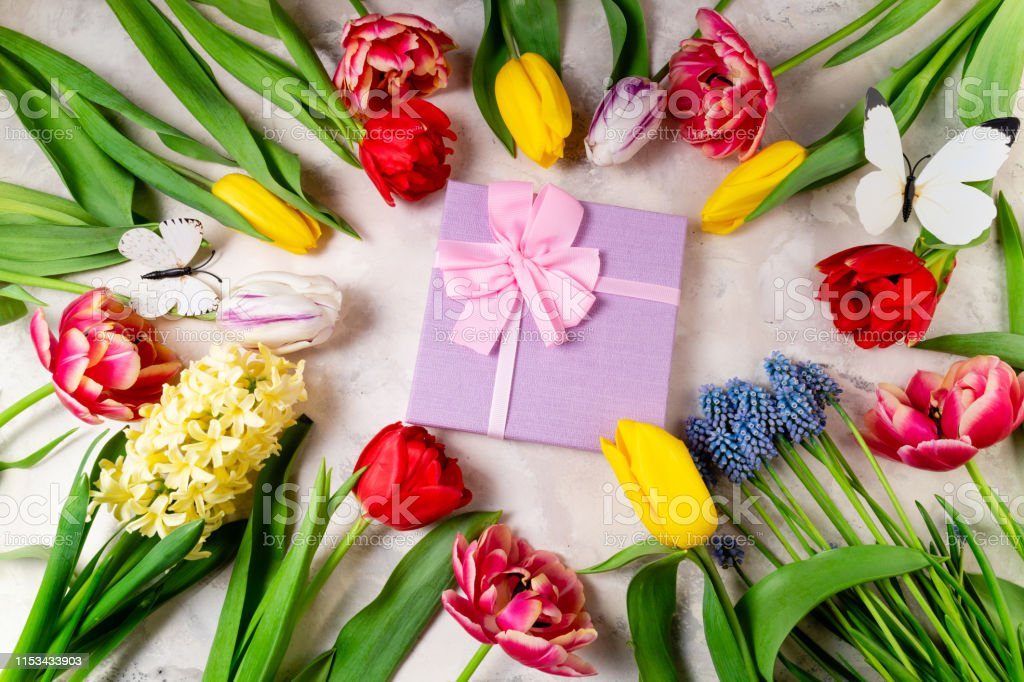 Festive background with flowers and gift box. Tulips, spring flowers...