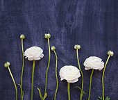 istock Festive invitation card with beautiful flowers 930978238