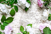 istock Festive roses flowers composition on the white wooden background 807819882