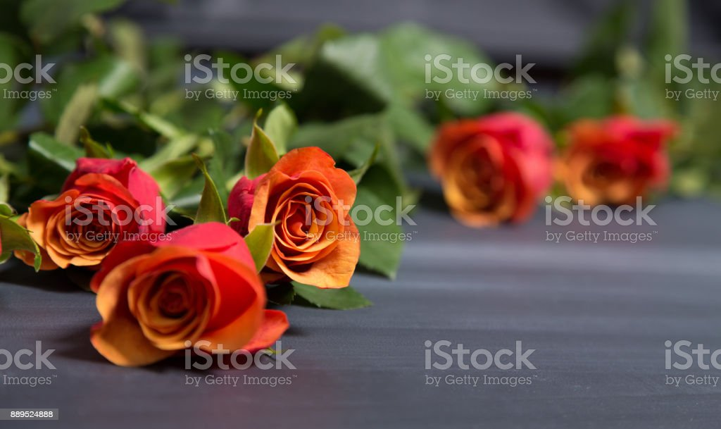 Few orange and red rose flowers on dark chalcboard surface. Bouquet on a blur abstract background with copy space. stock photo