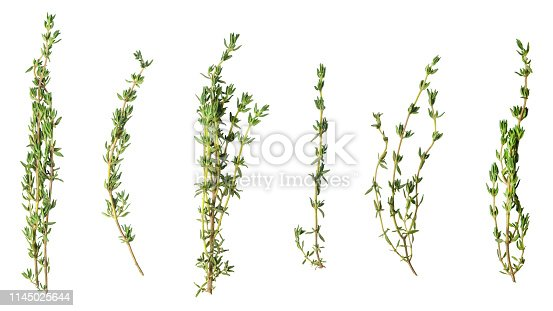 A few sprigs of fragrant thyme isolated on white.