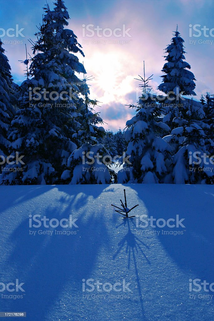 Fiat Lux royalty-free stock photo