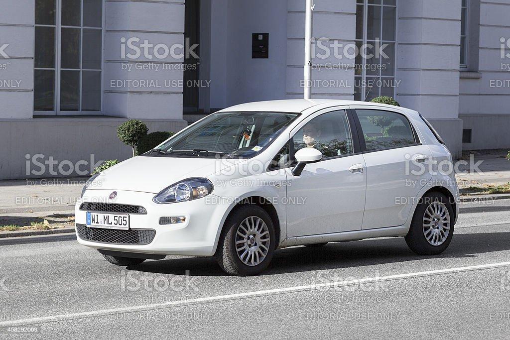Fiat Punto (2012) stock photo