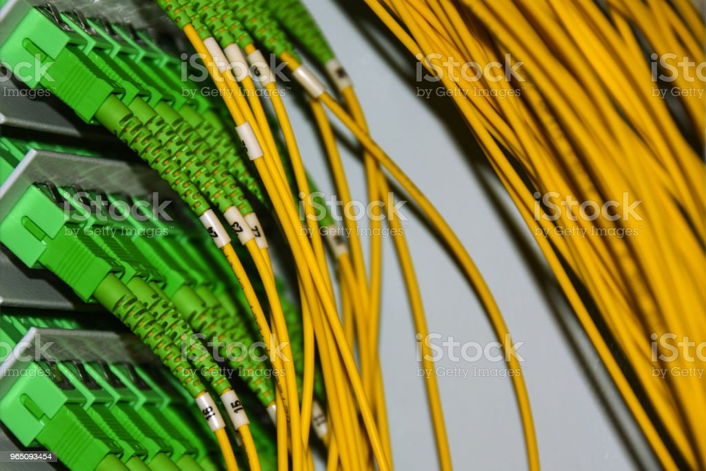 Fiber optic cables on the patch panel in the telecommunications cabinet transmit data on the IP protocol zbiór zdjęć royalty-free