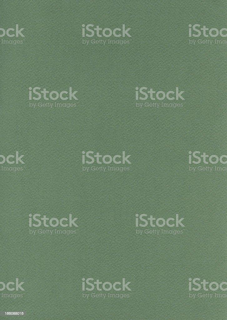 Fiber Paper Texture - Fern Green XXXXL royalty-free stock photo