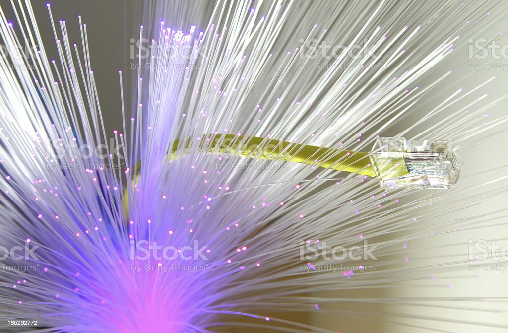 Fiber royalty-free stock photo